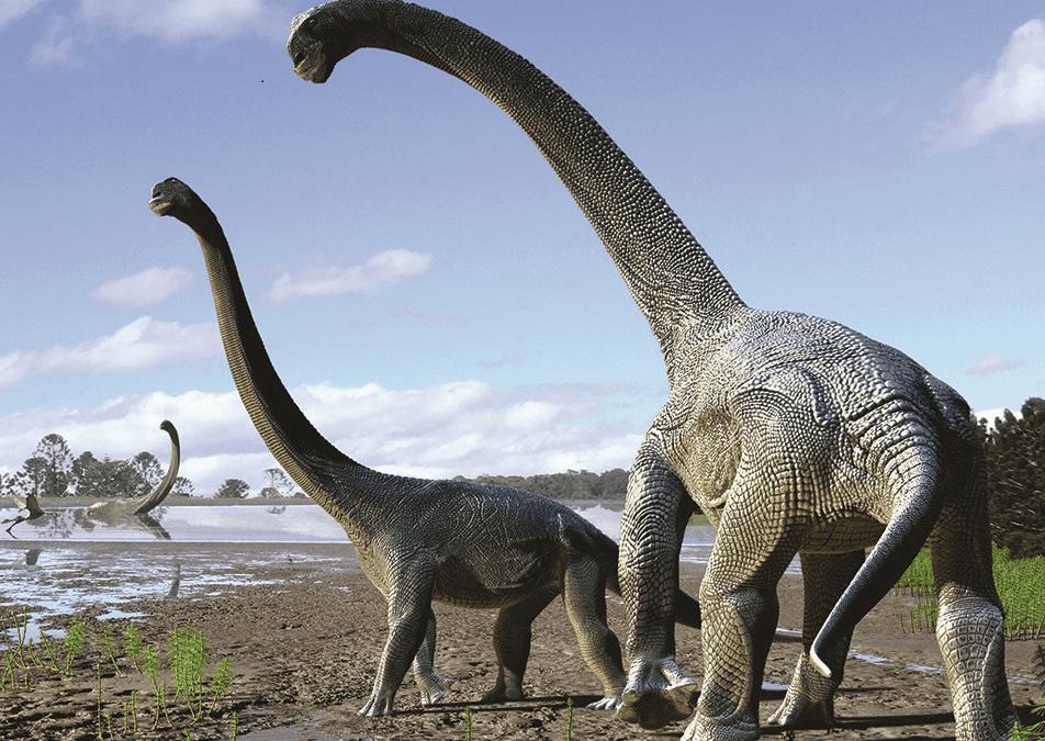 Photo of Fósseis de dinossauros são encontrados no Maranhão