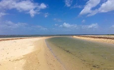 """A exuberante e política Ilha de Curupu conhecida como """"Ilha do Sarney"""""""