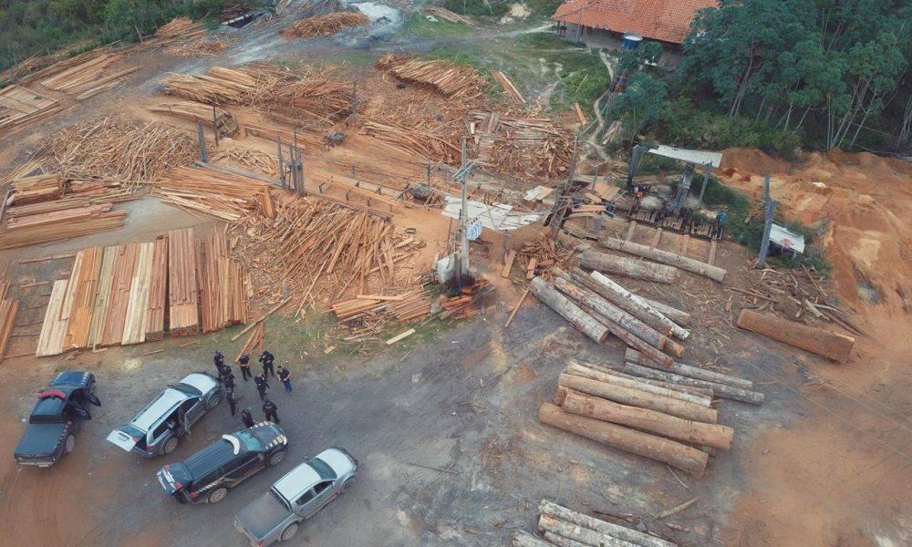 Photo of Policia Federal combate extração de madeira no Maranhão