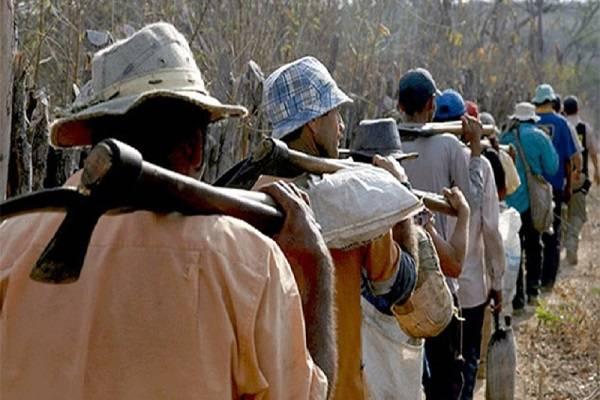 Photo of Mais de 30 pessoas são resgatas em situação análoga à escravidão em Balsas (MA)